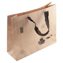 Reusable and Recyclable Paper Bag